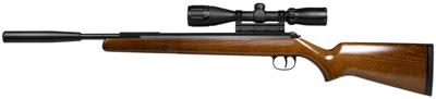 Diana RWS 34 Meisterschutze Pro Compact