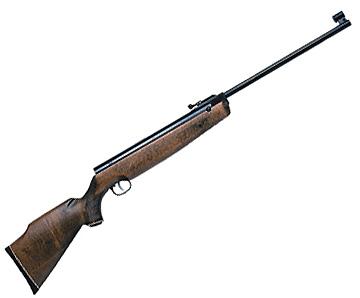 Beeman R1 Supermagnum Carbine