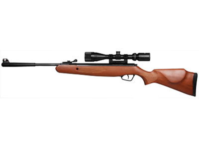 Stoeger Arms X20 Wood Breakbarrel Air Rifle Combo