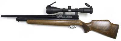 Webley Raider 10 Combo