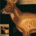 Champion X-Ray Paper Targets, Deer, 25×25 – 6pk