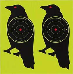 "Beeman Shoot-N-C Crow Targets, 8"" Round, 3"" Bullseye, 12ct"
