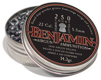 Benjamin .22 Diabolo