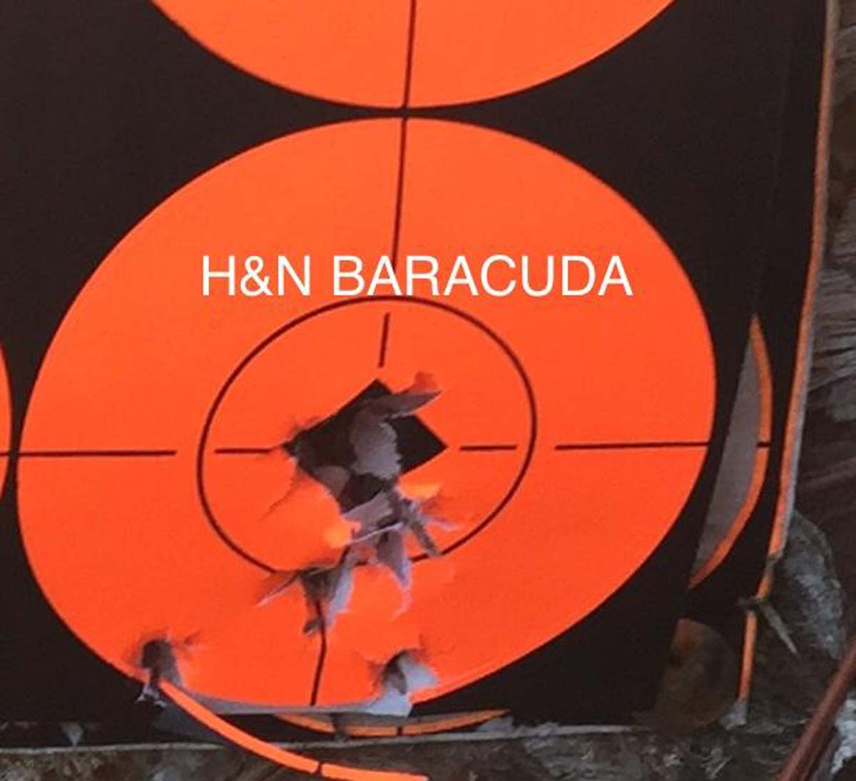 Customer images for H&N Baracuda | Pyramyd Air