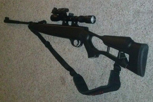Customer images for Gamo Gun | Pyramyd Air
