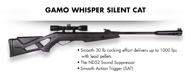 Gamo Whisper Silent Cat
