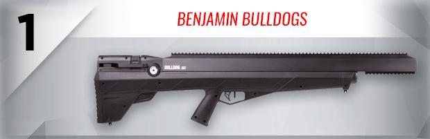 Benjamin Bulldogs