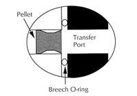 Basic airgun maintenance for beginners