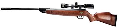 Beeman GS1000 Combo 3-9x32 Scope