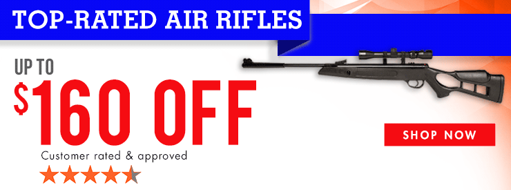 Top-Rated Air Rifle Sale