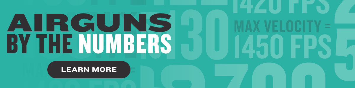 Airguns By the Numbers