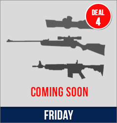Deal 4 - coming soon