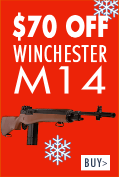 $70 of Winchester M14 CO2 Rifle
