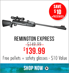 Remington Express: Save $10 + Free pellets + safety glasses - $10 Value