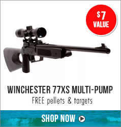 Winchester 77XS - FREE pellets & targets
