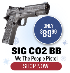 SIG We the People Pistol - only $89.99
