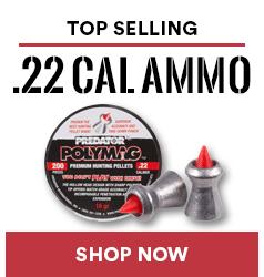 Top .22 Cal Ammo