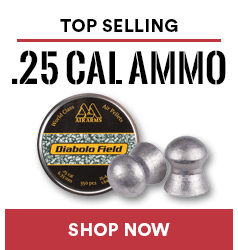 Top .25 Cal Ammo