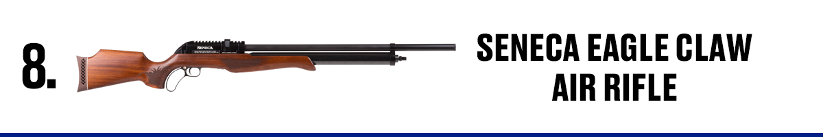 Seneca Eagle Claw Air Rifle