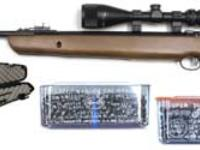 Air Venturi Avenger 1100 Combo Air rifle