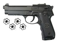 Beeman 2008 CO2 Air Pistol Air gun