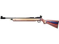 Daisy Match Grade Avanti 888 Medalist Air rifle