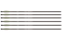 Benjamin 26 inch Airbow Arrows, 6 pack