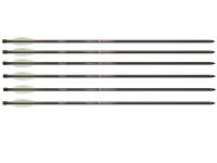 Benjamin 26 inch Pioneer Airbow Arrows, 6 pack