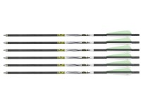 FX Crown Arrows, 6 pack