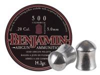 Benjamin Cylindrical .20.