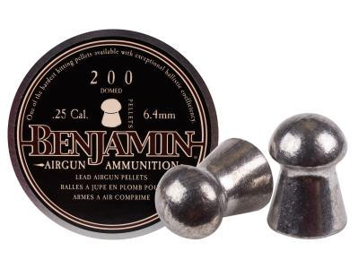 Benjamin .25 Cal