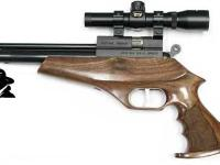 Evanix Renegade Pistol Combo Air gun