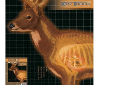 Champion X-Ray Paper