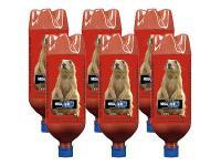 Airburst MegaBoom 1-Liter Bottles w/BoomDust, Prairie Dog Graphic, 6pk