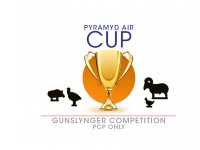 PA Cup Gunslynger PCP Only Competition