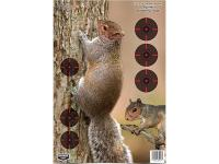 Birchwood Casey Pregame Squirrel Target, 12 inchx18 inch, 8ct