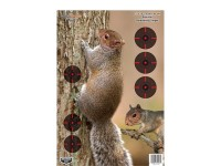"Birchwood Casey Pregame Squirrel Target, 12""x18"", 8ct"