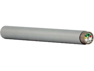 Walther Air Cylinder