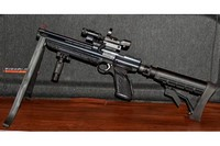 Crosman PC77 Custom - I own 5 of these! See my review on the 1377C Brown. This is my latest!