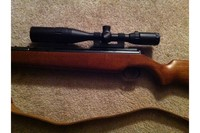 Diana RWS 48 - Just received it today.  It is awesome!  I added a Leapers 5th Gen 3-9X40 AO scope and sling swivels.