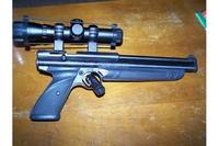 1377 - BSA Edge 2x20 scope