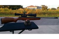 Ruger Air Hawk Combo - The scope and scope mount are a much needed upgrade.