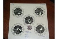 Meisterkugeln 8.2g - Here is what they look like through a Tech Force  10m rifle target.