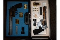 """Dan Wesson 8"""" and 6"""" - These are great BB guns.  I even have gun cases for them."""