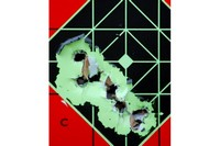 Marauder .25 cal at 50 yds with fresh fill - Tight grouping; also have taken fur-bearers at same distance with single shot.
