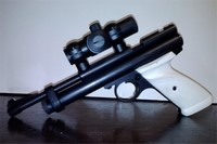 2240 with addons - Crossman 2240 with Crosman dot sight