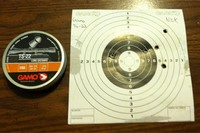 Ts-22 - Shot these with hatsan 100 x torpedo with open sights at about 30 yards