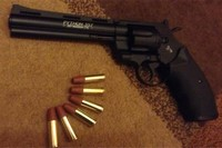 Python  - Bullets