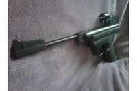 IZH 53M 2 - with Daisy red dot sight