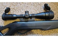 Gamo Silent Cat - Using the leapers 1-pc high profile 11mm dovetail mount  with leapers 3-9x40 scope.